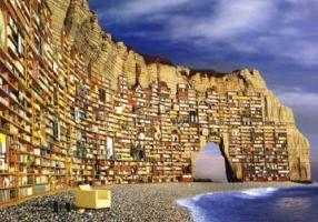 È nata la prima Biblioteca del Bilancio Sociale